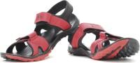 Puma Vesta SDL DP Men Black, Red Sports Sandals Black, Red