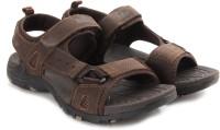 Lee Cooper Men Brown Sandals Brown