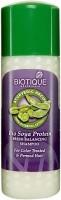 Biotique Bio Soya Protein Fresh Balancing Shampoo (120 Ml)