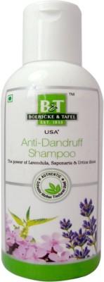 Boericke & Tafel B&T Antidandruff Shampoo