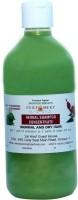Bhavani Singh Hibiscus Shampoo (500 Ml)