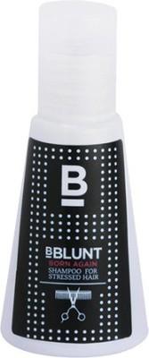BBLUNT Born Again Shampoo for Stressed Hair