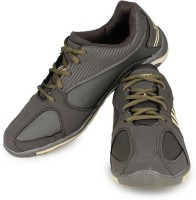Sparx Flex Experience Olive Beige Running Shoes
