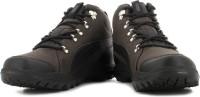 Puma SilicisMid HC DP Sneakers