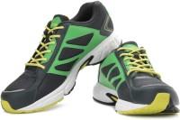 Reebok Speedy Runner Lp Running Shoes: Shoe