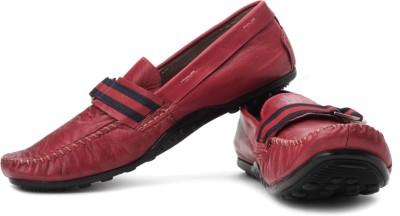 Steve Madden Koltt Loafers