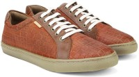U.S. Polo Assn. Sneakers Brown, Red