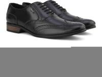 Lee Cooper Men Genuine Leather Lace Up Shoes Black - SHOEKSVAHHGHDHCJ