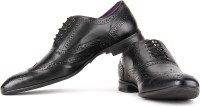 Knotty Derby Viktor Brogue Derby Lace Up Shoes Black