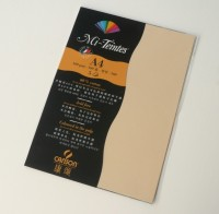 Canson Mi-Teintes A4 Colour Sheets 160gsm - Champagne 470 Sketch Pad (Champagne, 5 Sheets)