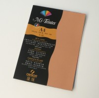 Canson Mi-Teintes A4 Colour Sheets 160gsm - Buff 384 Sketch Pad (Buff, 5 Sheets)