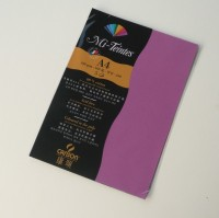 Canson Mi-Teintes A4 Colour Sheets 160gsm - Violet 507 Sketch Pad (Violet, 5 Sheets)