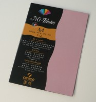 Canson Mi-Teintes A4 Colour Sheets 160gsm - Orchid 352 Sketch Pad (Orchid, 5 Sheets)