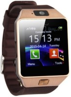 Crushacc With SIM Card, 32GB Memory Card Slot, Bluetooth And Fitness Tracker BROWN Smartwatch (Brown Strap)