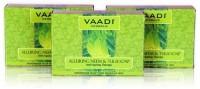 Vaadi Herbals Value Pack Of 3 Alluring Neem & Tulsi Soap (225 G)