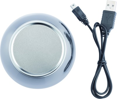Loooqs Stainless Steel Bluetooth Speaker