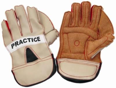 Vinex Practice Wicket Keeping Gloves