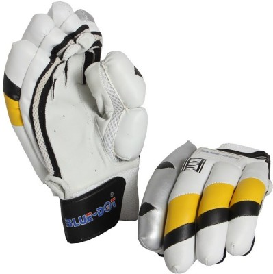 Blue dot Test -I Batting Gloves (Youth, Multicolor)