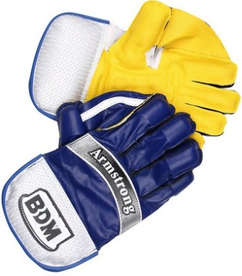 BDM Armstrong Wicket Keeping Gloves (Men, Multicolor)