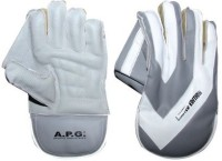 APG Limited Edition Wicket Keeping Gloves (Men, Multicolor)