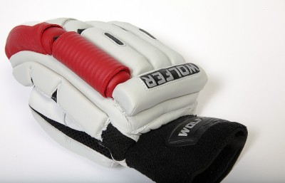 Wolfer Player Edition (Left Hand) Batting Gloves (Men, Red)