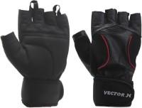Vector X VX-800 Gym & Fitness Gloves (XL, Black)
