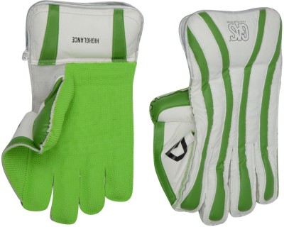 GAS HIGHGLANCE Batting Gloves (Youth, Multicolor)