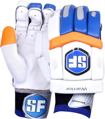 Stanford Warrior Batting Gloves (Men, Multicolor)