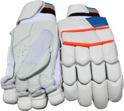 RS Robinson Limited Edition Batting Gloves (Men, Multicolor)