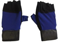 CP BIGBASKET Sweat Leather Blue & Black Gym & Fitness Gloves (Free Size, Blue, Black)