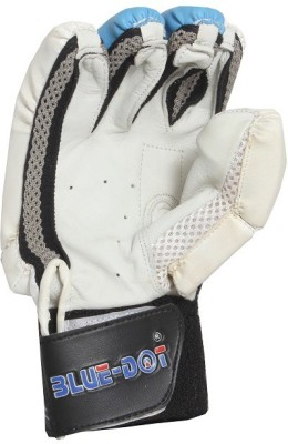 Blue dot ultra lite-II Batting Gloves (Boys, Multicolor)