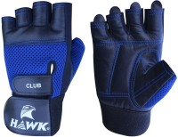 Hawk XT500 Gym & Fitness Gloves (L, Black, Blue)