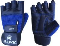 Hawk XT500 Gym & Fitness Gloves (L, Black, Blue)