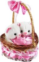 Play N Pets Lovable Cute Couple Teddy Bear In Basket  - 35 cm