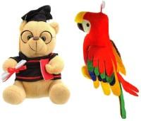 VRV Soft Musical Scholar Teddy Bear And Musical Parrot  - 20 Cm (Multicolour)