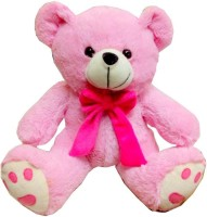 Fun&Funky Teddy Bear - 12 Inch (Pink)