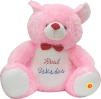 VTC Pt Giant Teddy Bear  - 20 Inch (Pink)