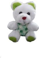 Ekku Teddy Bear  - 5 Inch (White, Green)