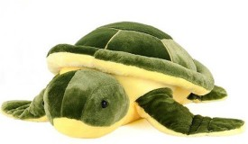 Speoma Cute and Soft Lovely Tortoise Premium soft Toy (Green & Yellow) - 22 cm