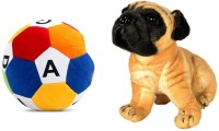MGPLifestyle Combo Of Pug Dog Soft Toy (32cm) & ABCD Ball  - 10 Cm (Multicolor)