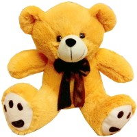 Fun&Funky Teddy Bear - 10 Inch (Multicolor)