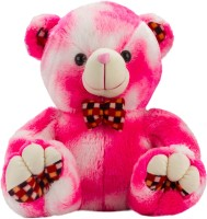 Glitters Valentines Double Shaded Pink Teddy  - 20 Inch (Pink, White)