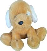 Toysartz Soft Toys dog17