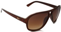 Puma Crocodile LaCost E Brown Wayfarer Sunglasses