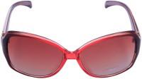 Miami Blues Oval Sunglasses - SGLE7SYBSSNPXCFD