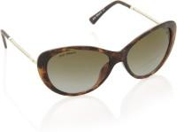 Joe Black Cat-eye Sunglasses - SGLE4U85FCDTZQHZ