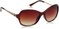 IMAGE Oval Sunglasses Brown
