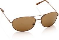 Petrol Oval Sunglasses