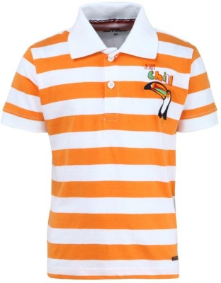Bells and Whistles Printed Boy's Polo T-Shirt