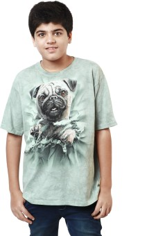 The Mountain Printed Boy's Round Neck Light Blue, Brown T-Shirt